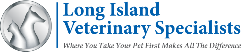 Long Island Veterinary Specialists